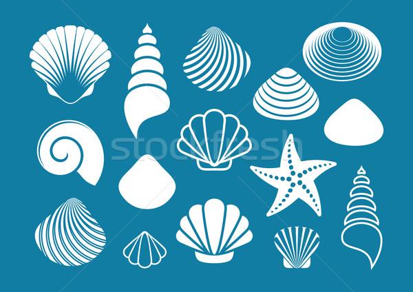 Photo stock: Blanche · mer · obus · starfish