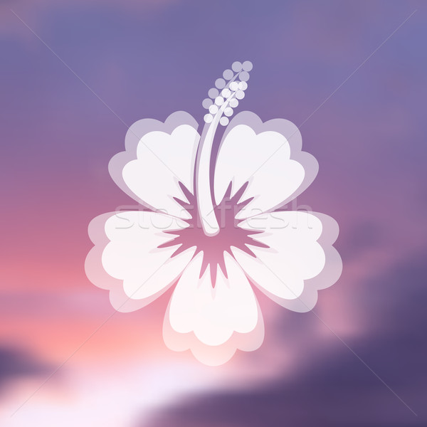 Hibisco flor icono blanco vector borroso Foto stock © blumer1979
