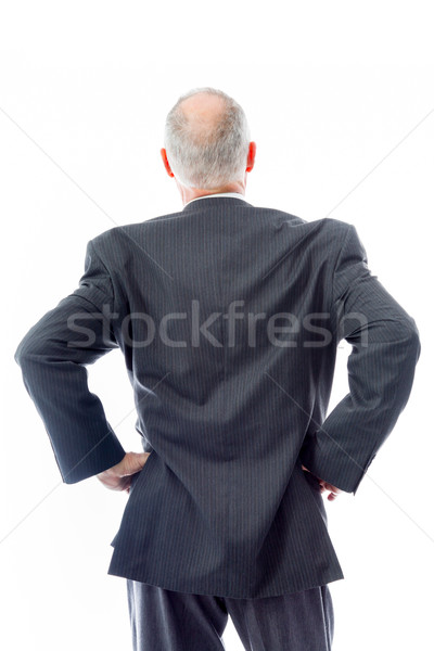Rear view of a businessman standing with his arms akimbo Stock photo © bmonteny