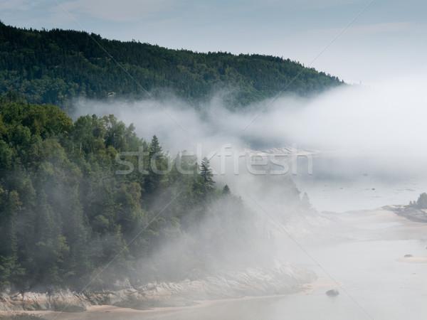 Mist rivier Quebec Canada bos groene Stockfoto © bmonteny