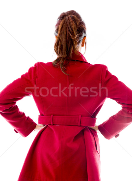 Rear view of an Indian young woman standing with her arms akimbo Stock photo © bmonteny