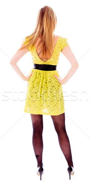 Hátsó nézet fiatal nő áll karok cipő panorámakép Stock fotó © bmonteny