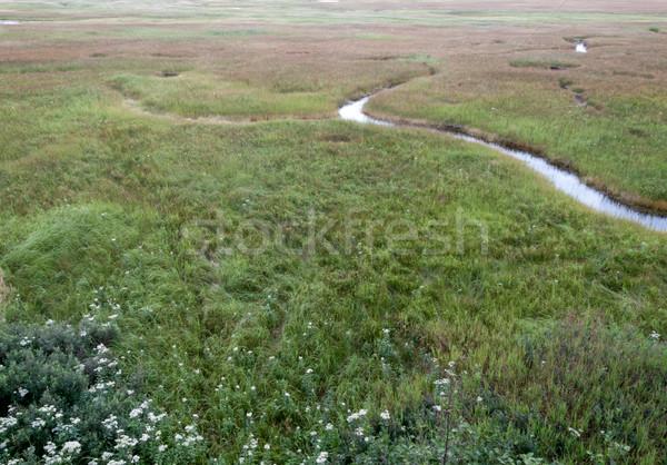 Quebec Kanada fű természet tájkép zöld Stock fotó © bmonteny