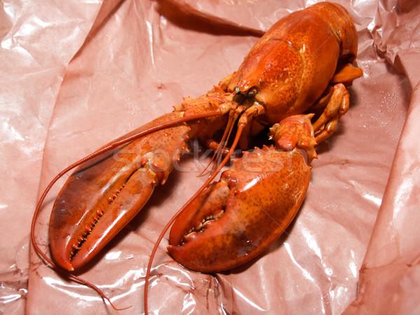 Cuit homard dîner déjeuner déjeuner Photo stock © bmonteny