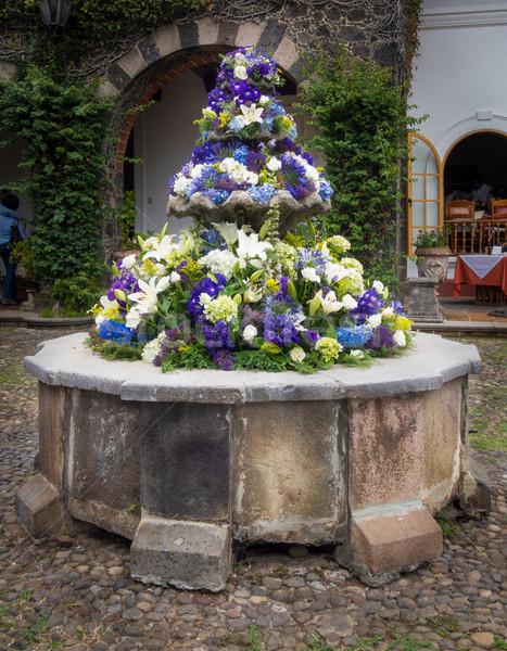 Szökőkút kert Mexikóváros Mexikó virág kő Stock fotó © bmonteny