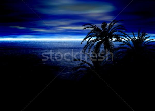 синий морской пейзаж горизонте пальма силуэта пляж Сток-фото © bobbigmac