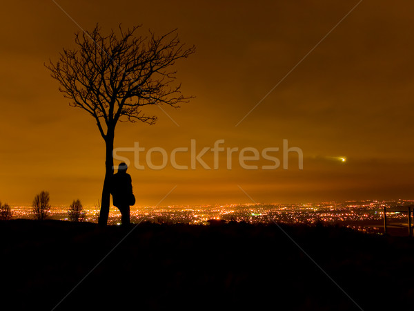 Silhouette of Man By Tree Overlooking Cityscape Stock photo © bobbigmac