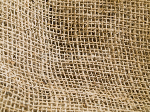 Natural Undulating Fibres Texture Stock photo © bobbigmac