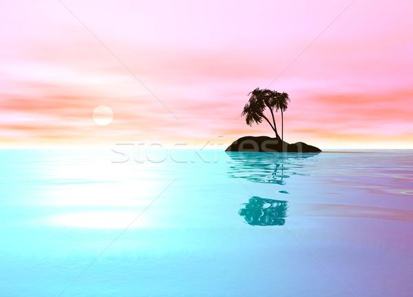 Romantique rose désert île palmier plage Photo stock © bobbigmac