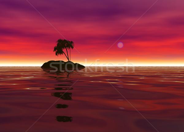 романтические пустыне острове пальма силуэта красный Сток-фото © bobbigmac