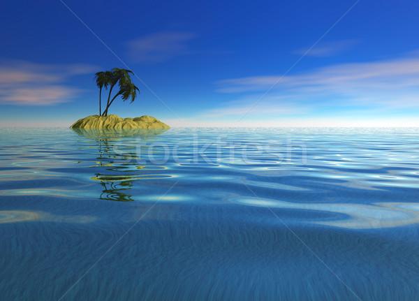 Romántica desierto isla palmera horizonte playa Foto stock © bobbigmac