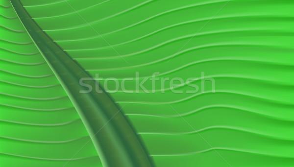 Tropicales hoja verde textura 3D vector hoja Foto stock © bobbigmac