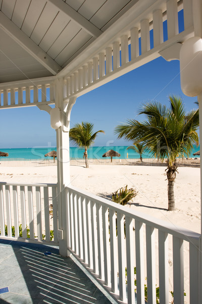 Tengerpart trópusi tengerpart pálmafák fehér tenger pálma Stock fotó © bobhackett
