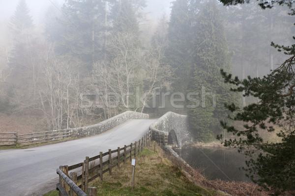 Reggel köd kicsi út híd kora reggel Stock fotó © bobhackett