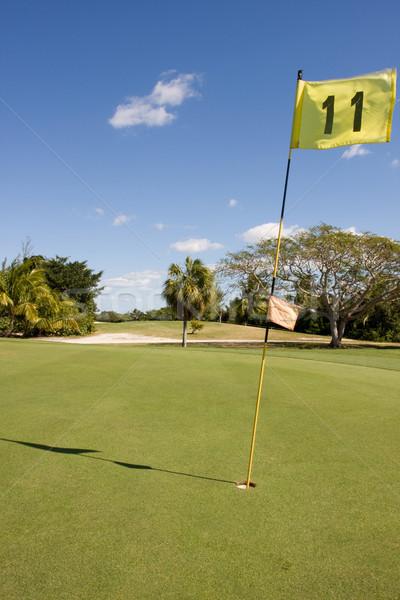 Zöld citromsárga zászló golf égbolt Stock fotó © bobhackett