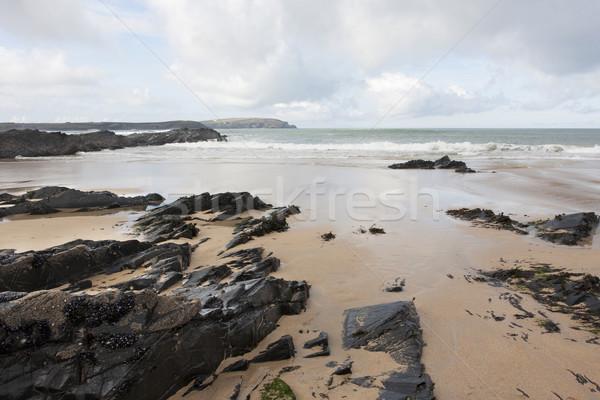 Kövek homok part elhagyatott tengerpart tél Stock fotó © bobhackett
