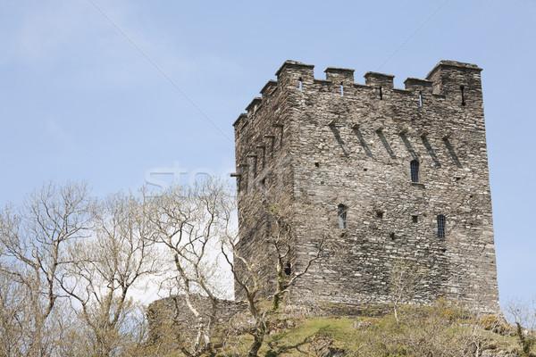 Domb felső erőd történelmi kastély torony Stock fotó © bobhackett