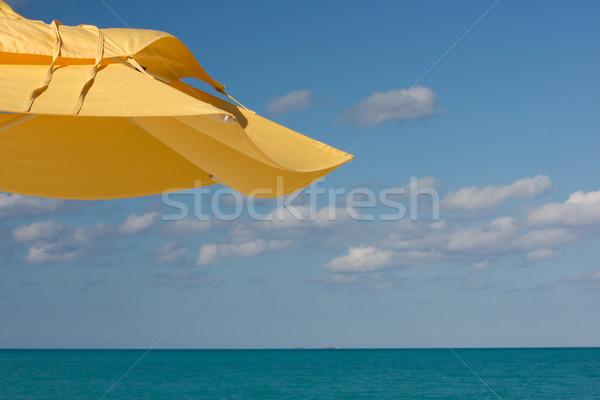 Citromsárga árnyék nap esernyő kék ég égbolt Stock fotó © bobhackett