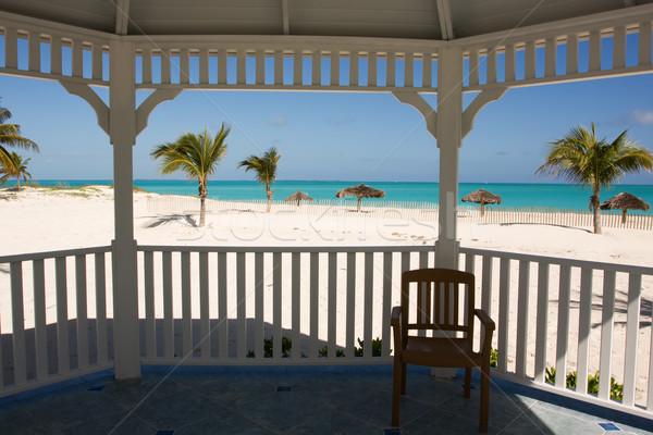 Trópusi tengerpart pálmafák fehér tenger pálma zöld Stock fotó © bobhackett