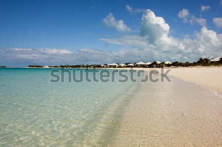 Zomer strand tropische rustig turkoois Stockfoto © bobhackett