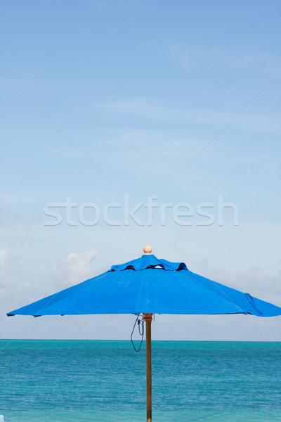 Kék tenger égbolt esernyő napernyő trópusi tengerpart Stock fotó © bobhackett