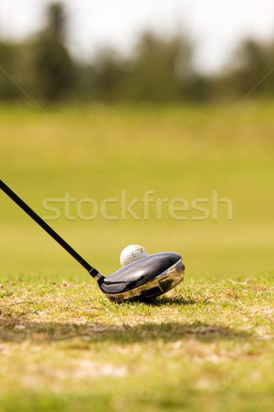 Golf club balle pilote balle de golf Photo stock © bobhackett