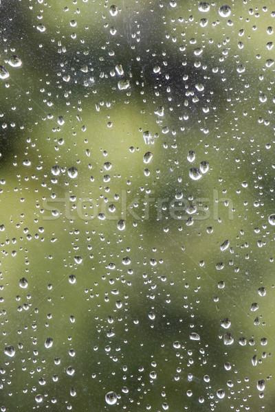 Yağmur damla pencere soyut model Stok fotoğraf © bobhackett