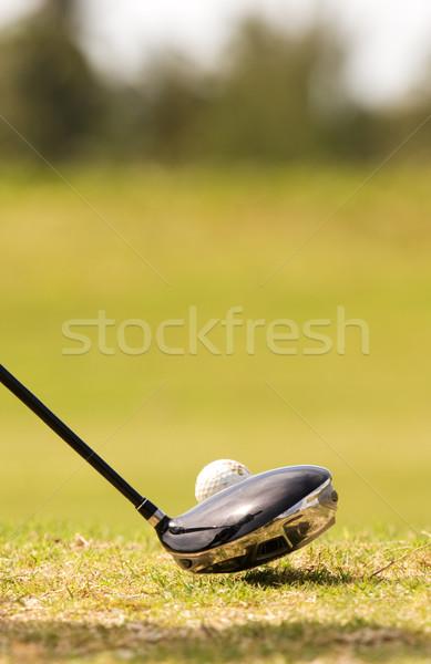 Jogador de golfe reflexões motorista golfe clube Foto stock © bobhackett