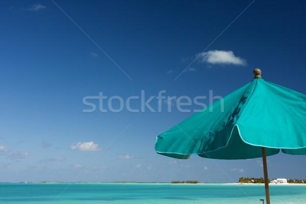 Zöld napernyő nap esernyő trópusi tengerpart tengerpart Stock fotó © bobhackett