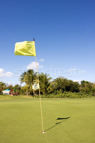 Golfozás zöld citromsárga zászló égbolt Stock fotó © bobhackett