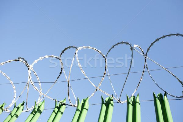 Scheermes draad top groene metaal veiligheid Stockfoto © bobhackett