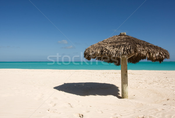 lone thatched sunshade Stock photo © bobhackett