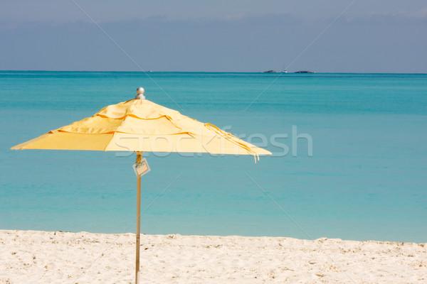 Trópusi napernyő citromsárga tengerpart esernyő trópusi tengerpart Stock fotó © bobhackett