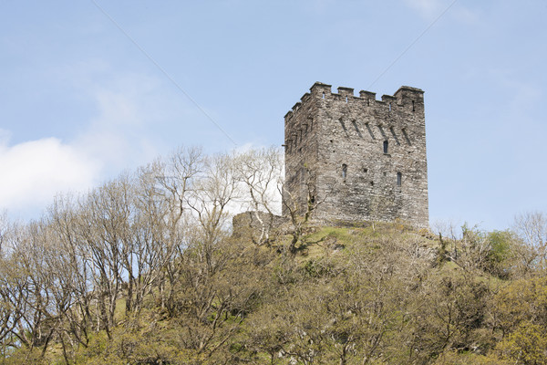 Kastély történelmi torony domb észak Wales Stock fotó © bobhackett