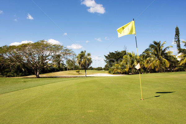 Stok fotoğraf: Golf · delik · sarı · bayrak · golf · sahası · gökyüzü