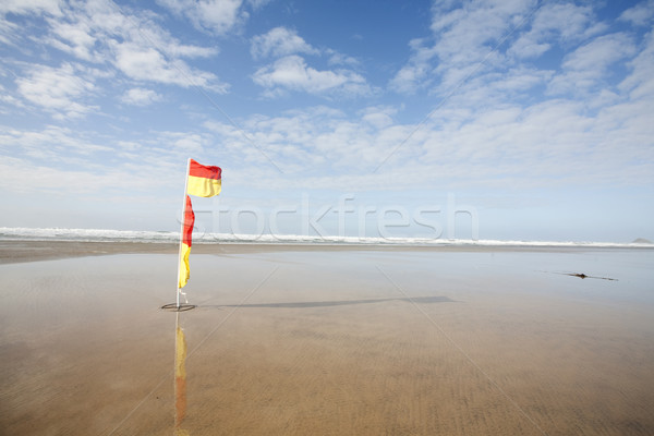 Vlaggen zwemmen waarschuwing wind strand Stockfoto © bobhackett