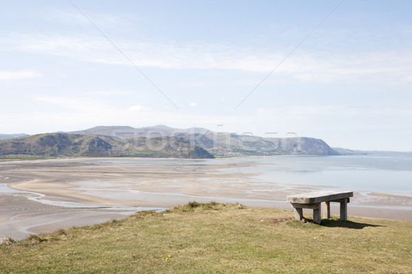 Zitting houten bank groot strand Stockfoto © bobhackett