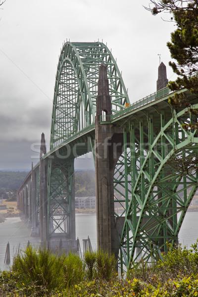 Mistig brug voorgrond oude groene metaal Stockfoto © bobkeenan