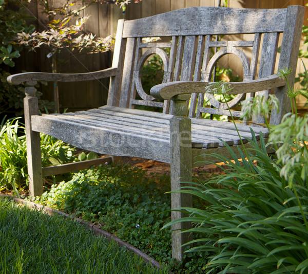 木材 庭園 ベンチ 風化した 緑 春 ストックフォト © bobkeenan