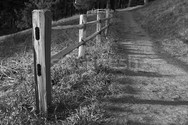 Wood fenced path BW Stock photo © bobkeenan
