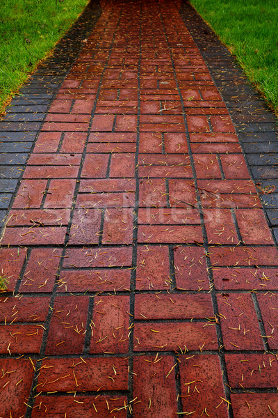Red Brick path on lawn Stock photo © bobkeenan