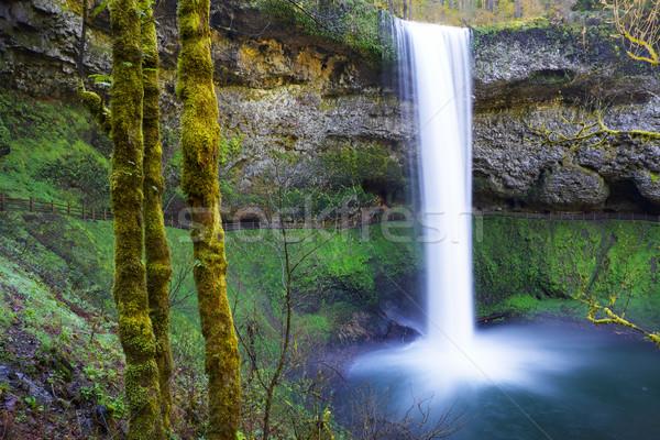 南 銀 公園 オレゴン州 水 下がり ストックフォト © bobkeenan