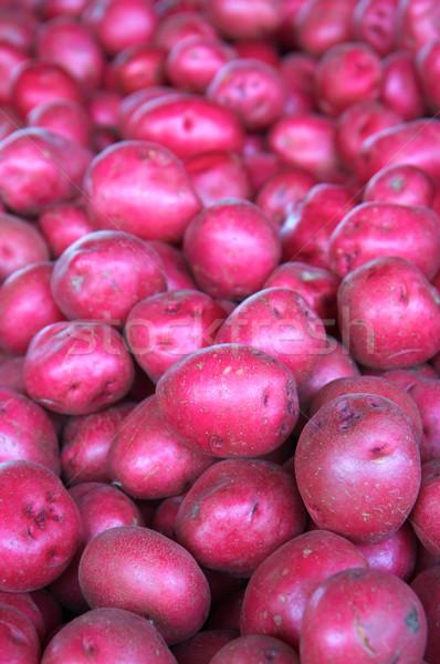 red potatoes Stock photo © bobkeenan