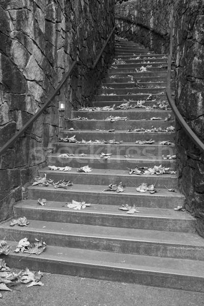 Feketefehér lépcsőfeljáró felfelé beton szeles kő Stock fotó © bobkeenan