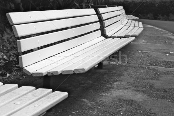 Curved Row of Park Benches Stock photo © bobkeenan