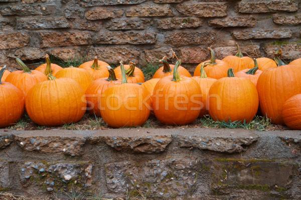pumpkins stone wall Stock photo © bobkeenan