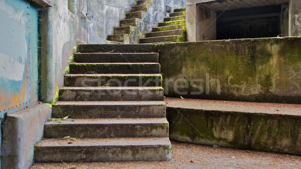 Concrete Bunker Steps left Stock photo © bobkeenan