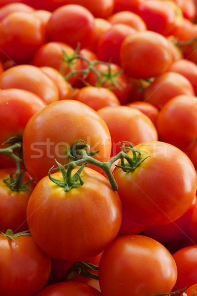 Pomidory zielone czerwony dojrzały Zdjęcia stock © bobkeenan