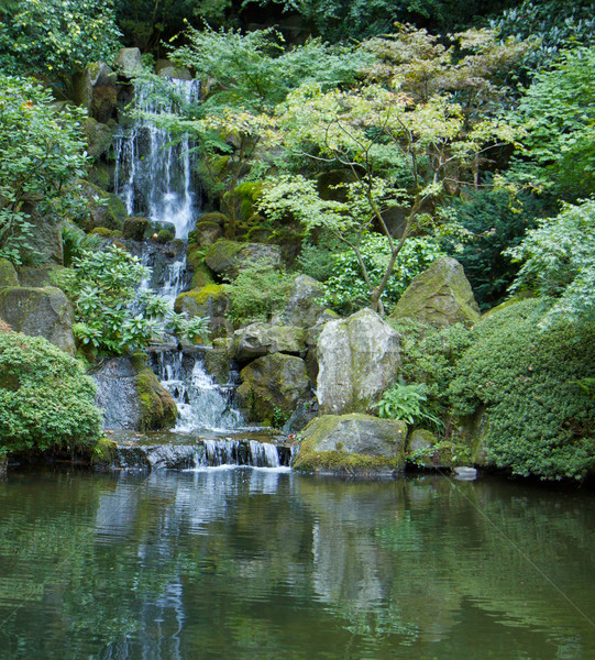 Japanese garden waterfall vert. left Stock photo © bobkeenan