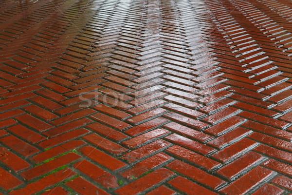 Mokro czerwony cegły drogowego kości deszcz Zdjęcia stock © bobkeenan